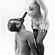 Head On Dildo Harness