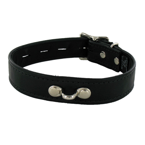 Locking Leather Collar with Horizontal Ring