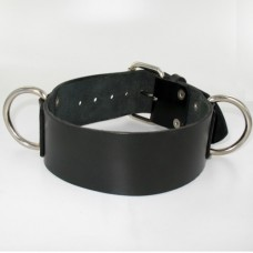 """Northbound 2"""" Collar with D-Rings"""