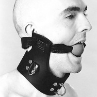 Northbound Leather Collar with attached Ball Gag
