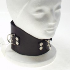 Northbound Locking Slave Collar