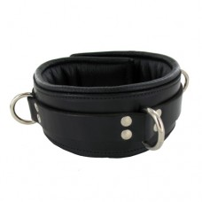 Locking Padded Collar w Black Lining