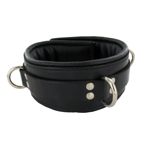 Locking Padded Collar w Black Lining