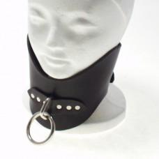 Small Posture Collar