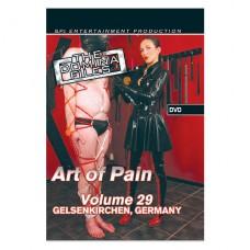 The Domina Files Vol 29