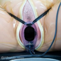**NEW** P.E.S. Little Big Man (LBM) Clitoral or G-Spot Electrode