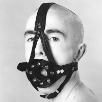 Northbound Leather Head Harness with Open Mouth Gag